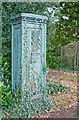 SU4117 : Unusual utilities cabinet outside house named Dunwoodie by Peter Facey