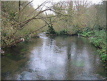 TQ0493 : River Colne in Rickmansworth by Nigel Cox