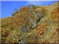 NH0014 : Secretive waterfall by Nigel Brown