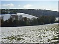 SU7495 : Pastures in snow, Lewknor by Andrew Smith