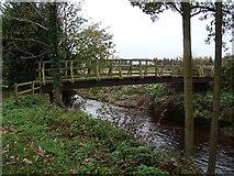 SE7485 : Sinnington Footbridge by David Rogers
