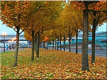 J3474 : Autumn evening, Belfast by Albert Bridge