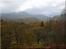 NY3404 : Ascending Loughrigg Fell by Michael Graham