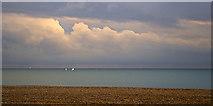 TQ3103 : Stony Beach, Brighton, East Sussex by Christine Matthews