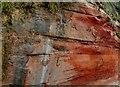 SY0179 : Sandstone Cliffs, Rodneys Point Exmouth by Nigel Mykura