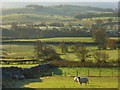 NY4327 : Pastoral view, Hutton by Andrew Smith