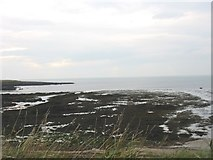 SH3368 : Exposed wave-cut platform at Porth Cwyfan by Eric Jones