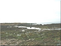 SH3368 : View south across the wave-cut platform at Porth Cwyfan by Eric Jones