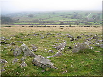 SX5476 : Dartmoor: Roos Tor: Hut circle by Nigel Cox