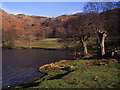 NY3404 : Loughrigg Tarn by Tom Richardson