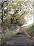 NT2674 : Steps on Calton Hill by Richard Webb