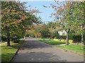 TL4556 : Barrow Road by Sandy B