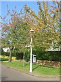 TL4556 : Gas Lamp - Barrow Road by Sandy B