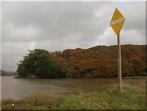 SX4663 : Sign near Blaxton Quay by Derek Harper