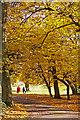 TQ2995 : Oakwood Park, London N14 by Christine Matthews