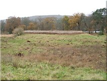 NS3882 : Earthworks of the original Balloch Castle by Lairich Rig