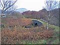 NM4624 : Same bridge, different viewpoint by Richard Dorrell