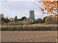 TM3461 : All Saints Church, Great Glemham by Adrian Cable