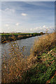 TL4287 : Forty Foot Drain near Horseway by Bob Jones