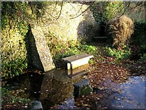 ST6601 : St Augustine's Well - Cerne Abbas by Sarah Smith