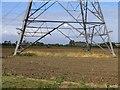 TL1854 : Pylon in a field by Andrew Tatlow