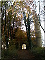 NZ3428 : Through the woods to the castle folly by Carol Rose