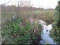 SO8686 : Smestow Brook near Prestwood by Gordon Griffiths