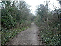 ST9101 : Trailway, Spetisbury by Mike Faherty