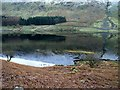 NY4711 : Upper end of Haweswater by Oliver Dixon