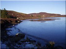 NO0254 : The Western Shore, Lochan Oisinneich Mor by Dorothy Carse