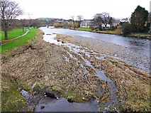 NY1130 : River Derwent in November by Rose and Trev Clough