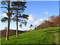 SU8598 : Pasture, Hughenden by Andrew Smith