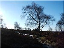 SK2773 : Below Birchen Edge by Peter Barr