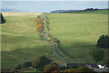 NY5675 : The road north out of Bewcastle by David Liddle
