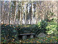 NZ0158 : Stone bench for weary churchgoing parishioners by Mike Quinn