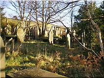 SE0328 : Throstle Bower Graveyard by Alexander P Kapp