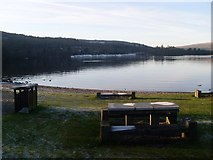 NS3882 : Picnic area by Loch Lomond by Stephen Sweeney