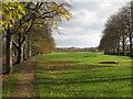 NY9265 : The western end of Tyne Green by Mike Quinn