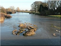 ST9102 : Spetisbury: the Stour downstream from Crawford Bridge by Chris Downer