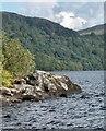 NN3209 : Inveruglas on Loch Lomond by Gerald England