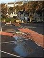 SX9164 : Puddles, Torquay coach station by Derek Harper