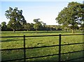 TL3451 : Wimpole Estate - grazing land by Given Up