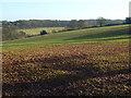 SP9404 : Farmland, Asheridge by Andrew Smith
