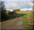 TL6857 : Public footpath to nowhere in particular by Hugh Venables