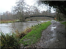 SU9948 : Bridge leaving Shalford Park as seen from the west bank by Basher Eyre