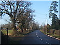 TM1172 : Yaxley Road heading towards the A140 by Andrew Hill