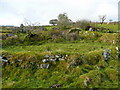 SX2474 : Hut circles on Siblyback Moor 1 by Jonathan Billinger