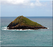 SW9381 : The Mouls, Rumps Point, Cornwall by Andy F