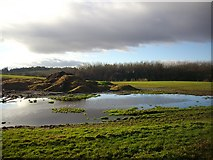 SO7334 : Dung heap and pool by the Clencher's Mill road. by Bob Embleton