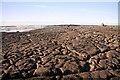 R0596 : Ballaghaline Point by Bob Jones